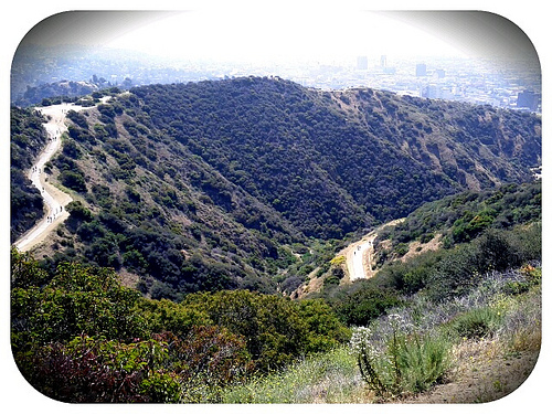 A picture named runyonCanyon.jpg
